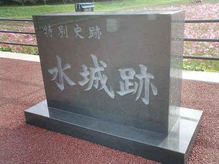 コスモス太宰府01.JPG