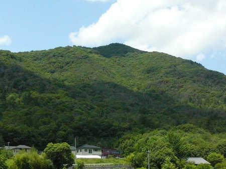 白木山z.JPG