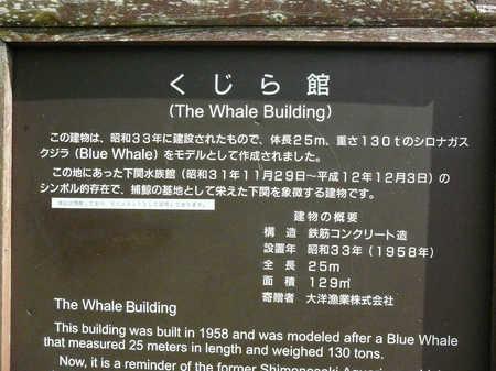鯨舘03.JPG