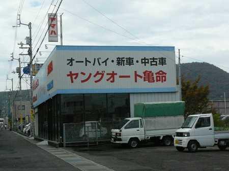 04_ヤング.jpg